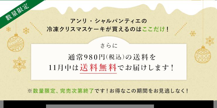 通常980円(税込)の送料を11月中は送料無料でお届けします!