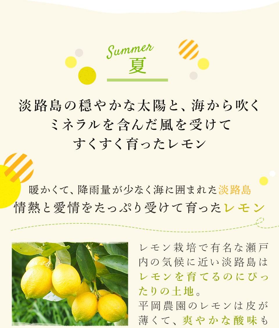 「ひょうご五國豊穣」レモンマドレーヌ