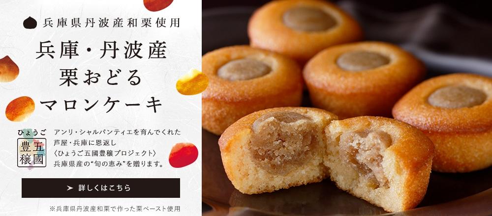 兵庫丹波産栗おどるマロンケーキ